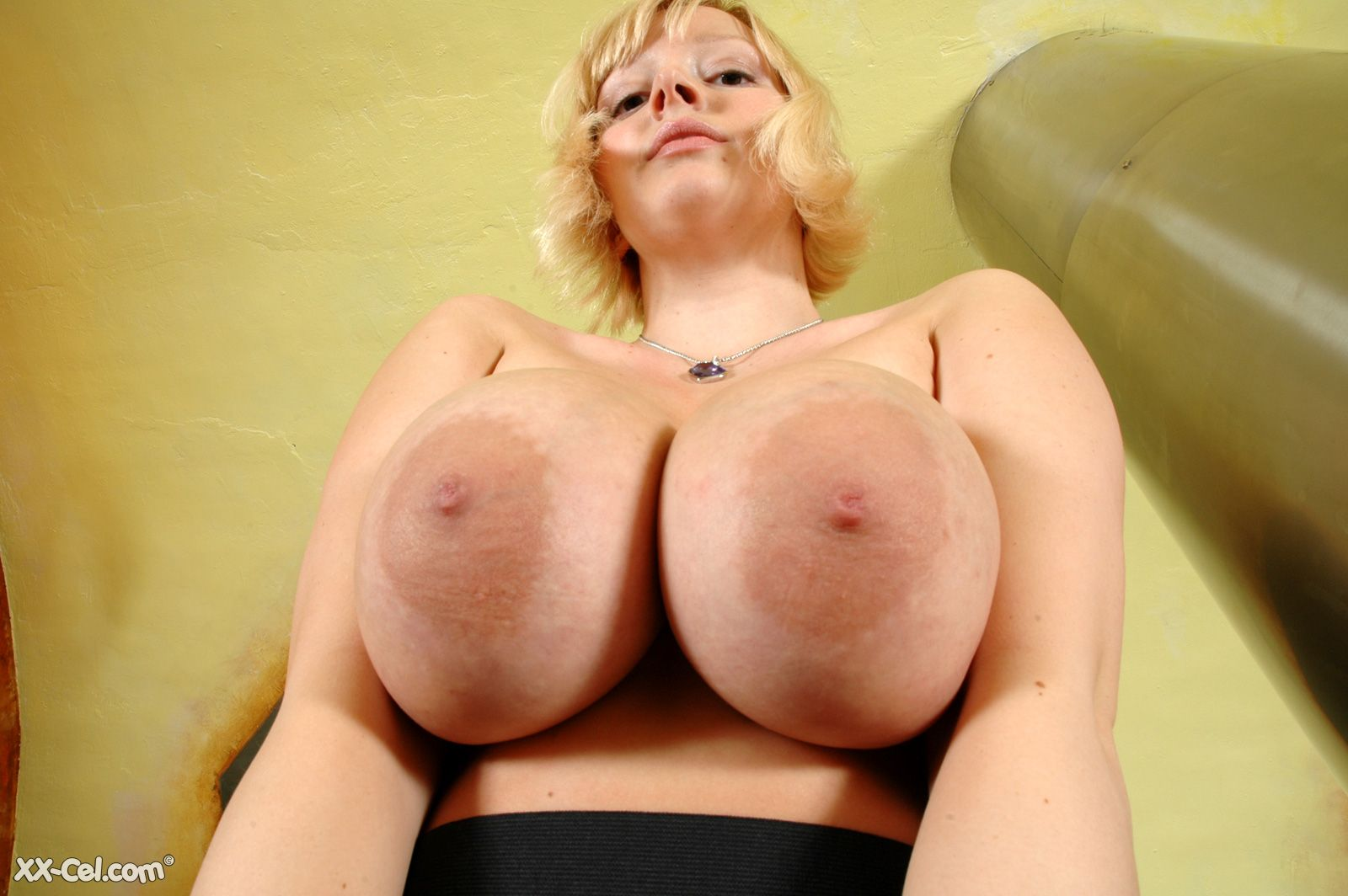big boobs p bbw lover
